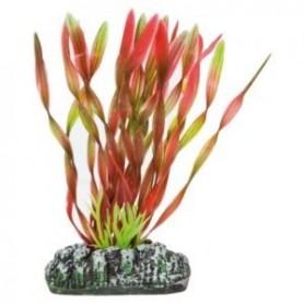 Planta Vallisneria roja plástico